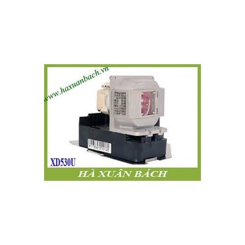 VN135A6-180503-1249.jpg