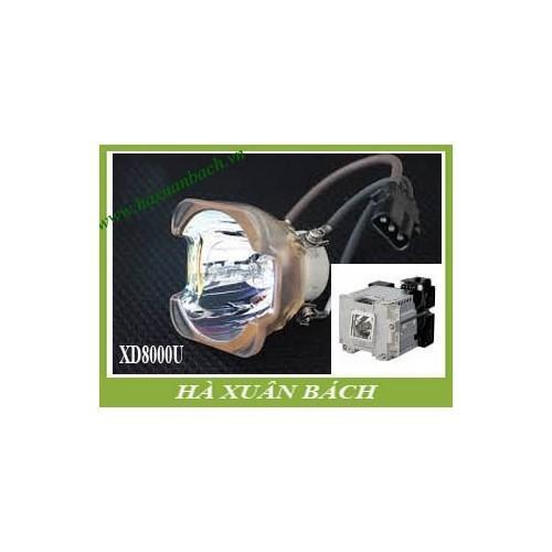 VN135A6-180503-1259.jpg