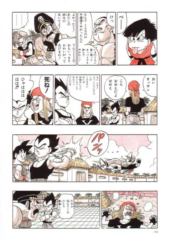 daizenshuu_02_page246_5078410501_o.jpg